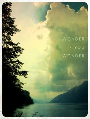 i wonder if you wonder